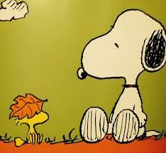 to ] Great to own a Ray-Ban sunglasses as summer gift.Snoopy and Woodstock :) Peanuts Gang, Peanuts Cartoon, Charlie Brown And Snoopy, Snoopy Love, Snoopy And Woodstock, Peanuts Characters, Cartoon Characters, Woodstock Pictures, Peanut Pictures