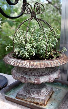urn with upside down iron plant holder.  did something similar to support sweet peas