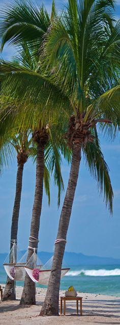 Coqueiros...redes... mar e sol...é assim o meu Brasil
