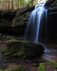 """Sam Calhoun on Instagram: """"It's waterfall Wednesday!  Here's one of my favorite shots of this waterfall found this past weekend in Bankhead National Forest, AL.…"""""""