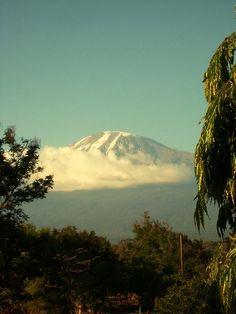 Art in Tanzania Kilimanjaro Climb, Wildlife Park, Tanzania, Mount Rainier, Raising, Climbing, Safari, Campaign, Africa