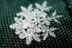 copo de nieve fractal.jpg