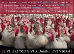 In the name of tradition, 45 million turkeys are killed & eaten on #Thanksgiving. #GoVegan #Vegan #AnimalRights