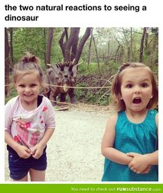 """2 natural reactions to seeing a dinosaur... """"I knew they were real"""" """"OMG! They are real!"""" Lol"""