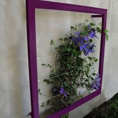 plant stands outdoor, fenc, flower trellis ideas, garden trellis, vine