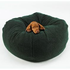 This Beanie Bag   19 Cozy Pet Beds That You Totally Want To Sleep In
