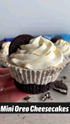 Fun Desserts, Delicious Desserts, Yummy Food, How To Make Desserts, Easy Bake Desserts, Recipes For Desserts, No Bake Oreo Dessert, New Dessert Recipe, Easy Cheesecake Recipes