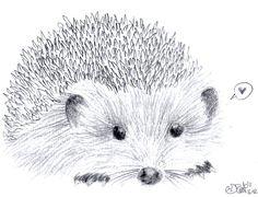 http://fc08.deviantart.net/fs70/i/2011/048/1/8/hedgehog_sketch_by_inyaa-d39qnws.jpg