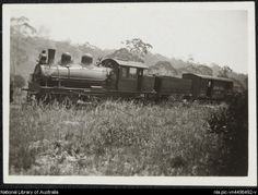 Shay geared locomotive in use for the Newnes Oil Works, Newnes, New South Wales, ca. 1930