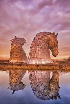 The Kelpies tower a colossal 30 metres above the Forth & Clyde canal and form a dramatic gateway to the canal entrance on the East Coast of Scotland. Sculpted by Andy Scott, The Kelpies are a monument to horse powered heritage across Central Scotland.