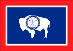 Flags of the Fifty States - Wyoming Lander Wyoming, Wyoming Flag, Cheyenne Wyoming, Us States Flags, U.s. States, Rock Springs Wyoming, Flag Store, Flag Pins, Texas Flags