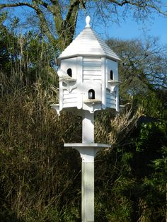Dove house on pinterest house and women 39 s for Dove bird house