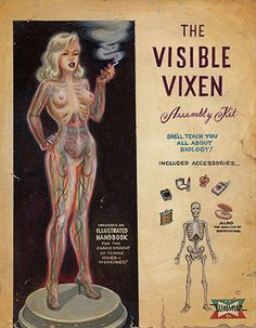 The Visible Vixen Assembly Kit by Keith Weesner