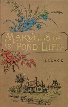 Marvels of Pond Life Book Cover Art, Book Cover Design, Book Design, Book Art, Victorian Books, Antique Books, Vintage Book Covers, Vintage Books, Beautiful Book Covers