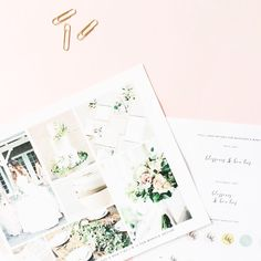Logo design + visual mood board for Blossoms & Bow Ties via b is for bonnie design