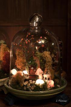 I thought mason jars were cute. The Bell Jar, Bell Jars, Photo Deco, Deco Nature, Fairy Jars, Garden Terrarium, Moss Terrarium, Fairy Houses, Glass Domes