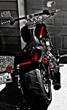 Harley Davidson Seats, Harley Davidson Night Rod, Harley Davidson Logo, Harley Davidson Motorcycles, Custom Bobber, Custom Harleys, Custom Street Bikes, Custom Bikes, Bobber Motorcycle