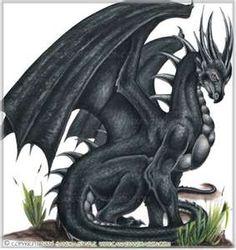 random dragons - dragons Photo