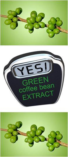 1000 images about green coffee bean extact on pinterest green