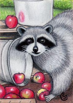 Raccoon Apple Basket - Original ACEO ART SFA ArtCard Fall Harvest Orchard Goeben #Realism