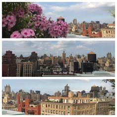 New York Skyline, Louvre, World, Building, Travel, The World, Voyage, Buildings, Viajes