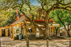 Luckenbach Texas General Store and Saloon by Debra Martz