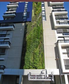 Camperdown apartment complex with 33m high vertical garden, Sydney, NSW, Australia