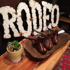 Not my first rodeo, Rodeo metal sign, Wall decor, Every day is a Rodeo, Gypsy Jule, Downtown Raleigh