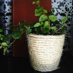 Rope Planter  The same method of wrapping rope can give a new look to a variety of objects in your home. This planter is just one of many possibilities!