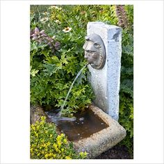 GAP Photos - Garden & Plant Picture Library - Lions head fountain spout - GAP Photos - Specialising in horticultural photography