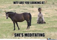 WTF are you looking at? She's meditating.