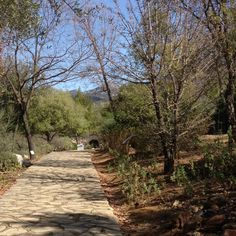 Jardín Botánico de El Bosque