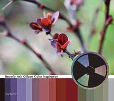 Beverly Ash Gilbert: Color Inspiration - Barberry New Growth // marsala, lavenders, purples, green, sage green