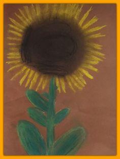 Auringonkukka pölypastelleilla ruskealle paperille. (1-2 lk)
