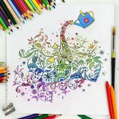 Johanna Basford   Colouring Gallery watercolor pencils Koh-i-noor
