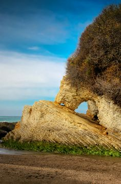 HDR Landscape: Spooner's Cove Arch (California) - photo by Viktor Elizarov from www.PhotoTraces.com