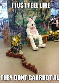 Easter is here and what better way to describe the fun of celebrating Easter than these funny happy Easter memes. We bring you top 25 funny happy Easter memes 2019 below. Easter Memes Jesus, Happy Easter Meme, Funny Easter Memes, Funny Easter Bunny, Jesus Easter, Funny Bunnies, Bunny Meme, Jesus Funny, Easter Pictures