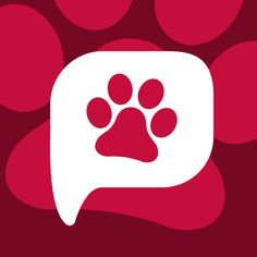 PetVibe - Connecting the pet community on the App Store