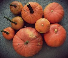 Quantrell Quips: Early Pumpkin Harvest
