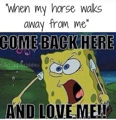When my horse walks away from me