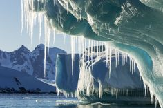 Icicles hang from a melting iceberg near Lemaire Channel, Petermann Island, Antarctica.