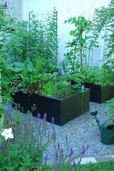 garden boxes Var Dag i Mitt Liv Farmhouse Garden, Garden Cottage, Garden Boxes, Vegetable Garden, Vegetable Boxes, Small Gardens, Outdoor Gardens, Shade Garden, Dream Garden