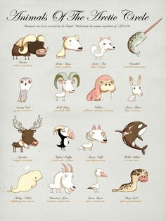 The Children's Guide To Natural History by UK-based illustrator Andy Ward.