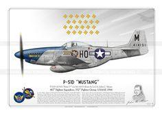 """P-51D """"Mustang"""" """"Petie 2nd"""" USAAF TK-01"""