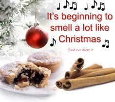 The Art of #Aromatherapy ~ making the house smell all Christmassy #Christmas #EssentialOils #Pine #Ginger #Orange #Cinnamon #CloveBud #Frankincense #Myrrh http://www.theremustbeabetterway.co.uk/aromatherapy/christmas-essential-oils.html