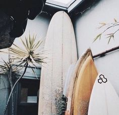 Surf :: Ride the Waves :: Free Spirit :: Gypsy Soul :: Eco Warrior :: Surf Girls :: Seek Adventure :: Summer Vibes :: Surfboard Design + Style :: Free your Wild :: See more Untamed Surfing Inspiration Beach Vibes, Summer Vibes, Summer Surf, Vans Surf, I Need Vitamin Sea, Good Vibe, Surf Shack, Alana Blanchard, Surf Style