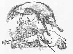 Wolf Illustration - From the book, Warrior Scarlet, 1958 - Artwork by Charles Keeping Wolf Illustration, White Pen, Black And White Pictures, Historical Fiction, The Guardian, Art Sketches, Light In The Dark, Illustrators, Art Gallery
