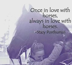 once in love with horses, always in love with horses...FOREVER