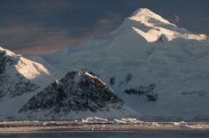adelaide island antarctica - Google Search