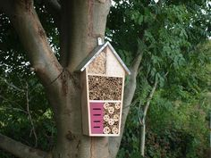 Tower Bee Hotel – Peach Perfect